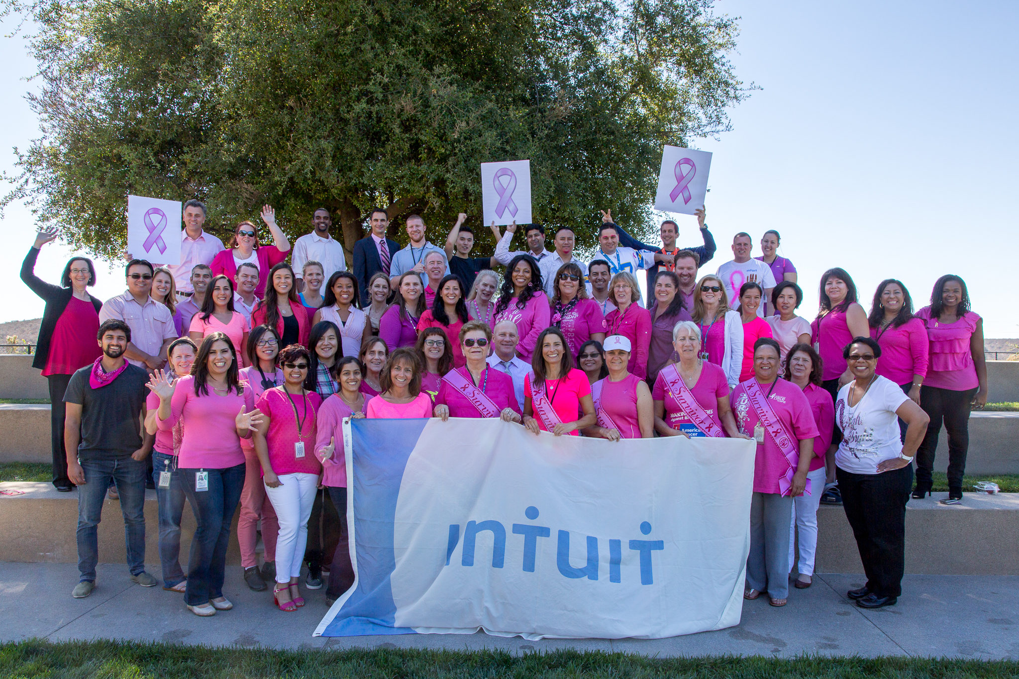Intuit_Pink_2014