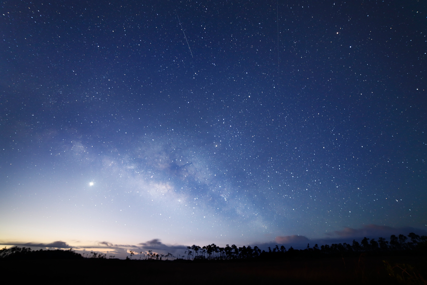 Night Sky over Everglades National Park