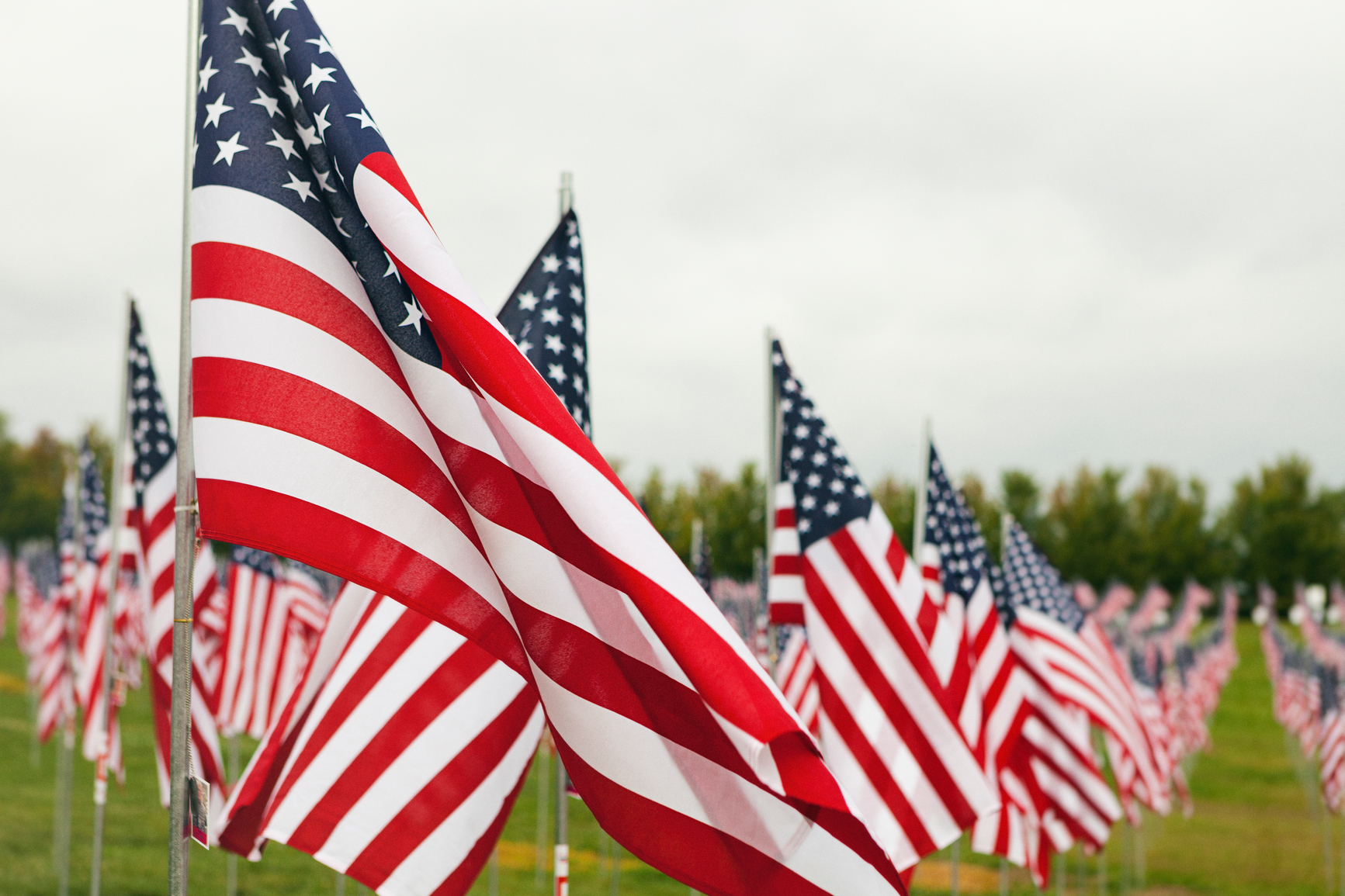 7,000 United States flags placed as a memorial display in Forest Park in St. Louis over the week prior to 9/11/2016.  A tribute to those who died in military service since 2001.