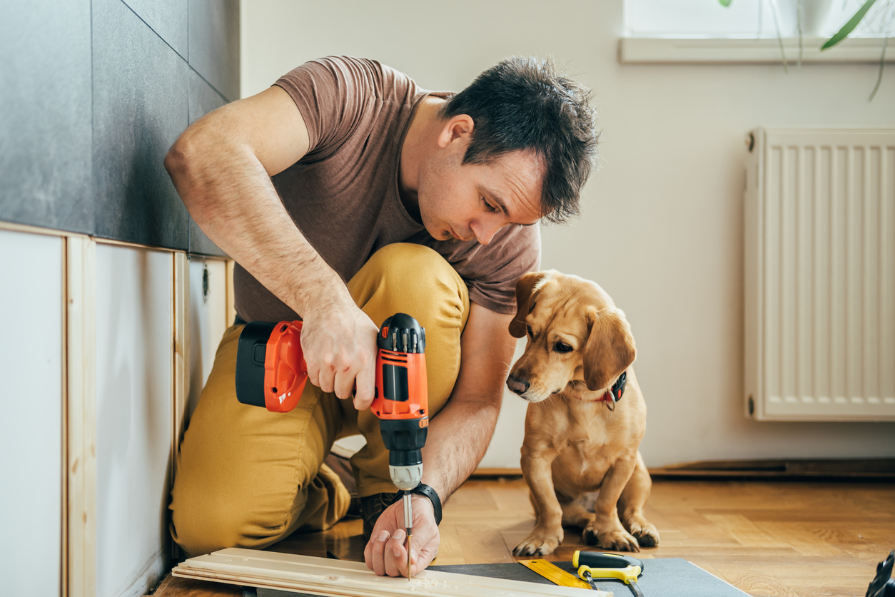 Man doing renovation work at home together with his small yellow dog