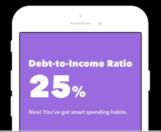 Debt-to-income Ratio 25%. Nice! You've got smart spending habits.